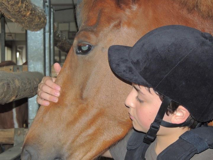 Jules équitation