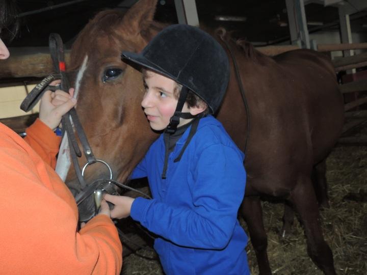 Équitation Mehdi