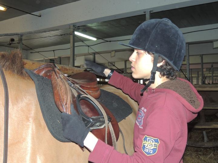 Équitation Ugo