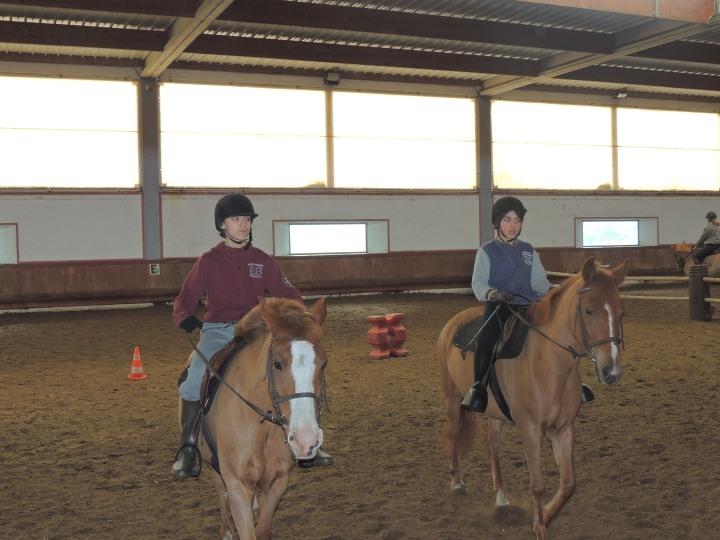 Stage d'équitation. Jules et Ugo
