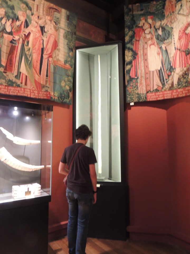 Musée Cluny. Dent de Narval
