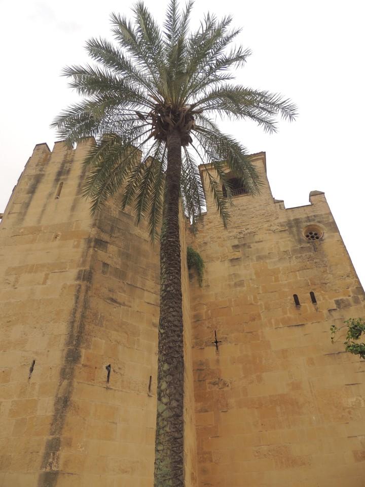 Mosquée de Cordoue.
